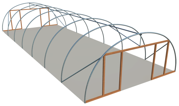Single span standard 21ft model polyhouse